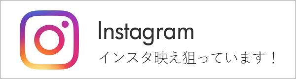 /bn/bn_instagram.jpg