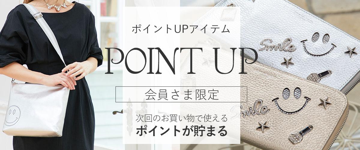 /sh/sh_point.jpg